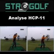 Analyse HCP-11