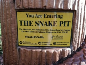 snakepit-copperhead-2