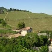 wijn-italie-2